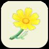 ACNH Yellow Cosmos Icon