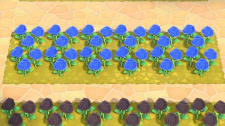 Animal Crossing New Horizons (ACNH) Blue Rose