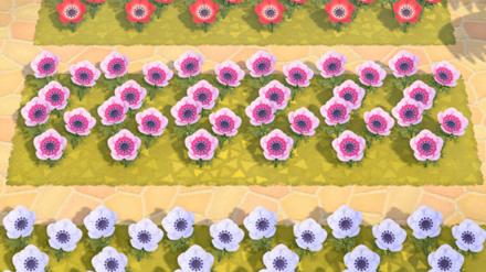 Animal Crossing New Horizons (ACNH) Windflowers
