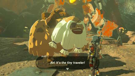 The Legend of Zelda Breath of the Wild (BotW) Talk to Bludo