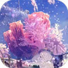 Coral Highlands Image