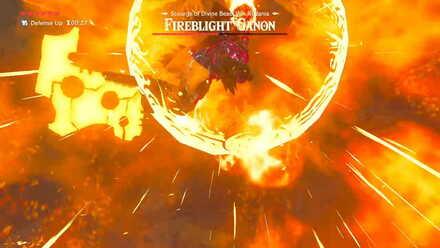 The Legend of Zelda Breath of the Wild (BotW) Fireblight Ganon Protective Barrier.jpg