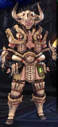 Bone Beta Armor Set