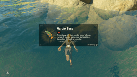 Botw - Catch a Hyrule Bass