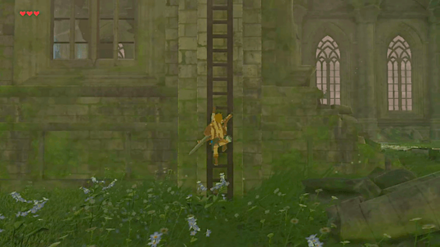 BotW - Climb the Ladder on the side of the Temple