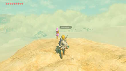 The Legend of Zelda Breath of the Wild (BotW) Villia.jpg