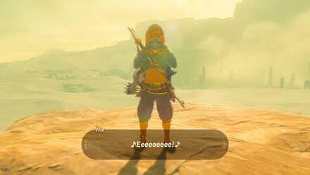 The Legend of Zelda Breath of the Wild (BotW) Link Wearing Gerudo Outfit.jpg