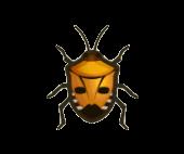 Man-Faced Stink Bug Image
