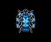 Rosalia Batesi Beetle Image