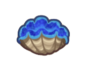 Gigas Giant Clam Image