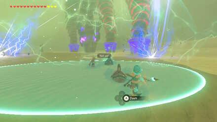 The Legend of Zelda Breath of the Wild (BotW) Riju