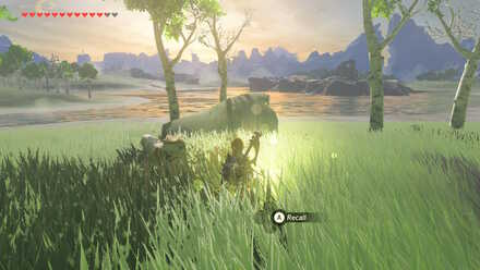 The Legend of Zelda Breath of the Wild (BotW) Recall Photo 2.jpg