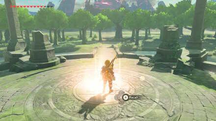 The Legend of Zelda Breath of the Wild (BotW) Recall Photo 1.jpg