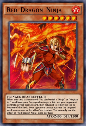 Red Dragon Ninja