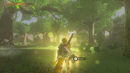 The Legend of Zelda Breath of the Wild (BotW) Recall Photo 12.jpg