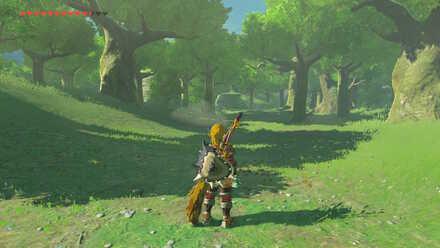 The Legend of Zelda Breath of the Wild (BotW) Hyrule Field forest entrance.jpg