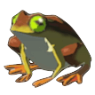 BotW Tireless Frog