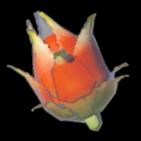BotW Voltfruit