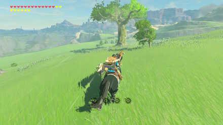 The Legend of Zelda Breath of the Wild (BotW) Photo 6 Location.jpg