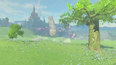 The Legend of Zelda Breath of the Wild (BotW) Photo 6 - Irch Plain.jpg