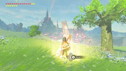 The Legend of Zelda Breath of the Wild (BotW) Recall Photo 6.jpg