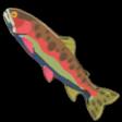 BotW Sizzlefin Trout