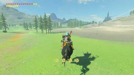 The Legend of Zelda Breath of the Wild (BotW) Going to Irch Plain.jpg