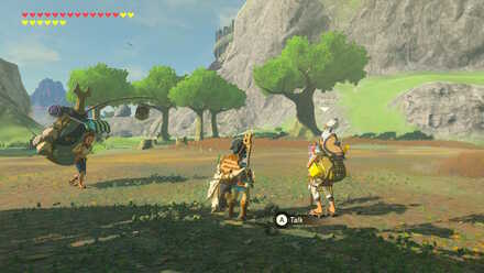 The Legend of Zelda Breath of the Wild (BotW) Pikango in Outskirt Stable.jpg