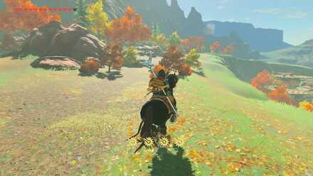 The Legend of Zelda Breath of the Wild (BotW) Shadow Pass.jpg