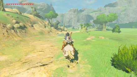 The Legend of Zelda Breath of the Wild (BotW) Road to Fort Hateno.jpg