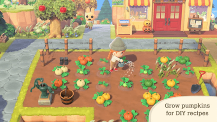 ACNH - Halloween Update - Farming and 4 Types of Pumpkins