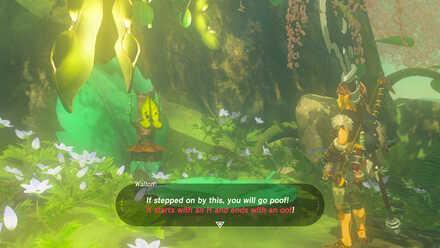 Riddles Of Hyrule Walkthrough How To Solve Riddles Zelda Breath Of The Wild Botw Game8