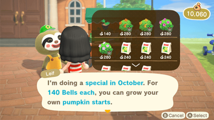 ACNH - Buy Pumpkin Starts from Leif