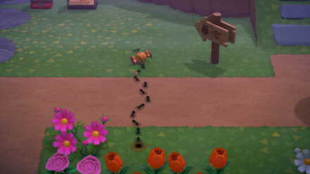 Animal Crossing New Horizons (ACNH) Ants on Candy