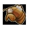 Cicada Shell Image