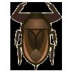 Giant Water Bug Image