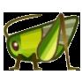 Grasshopper Image