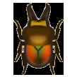 Rainbow Stag Image