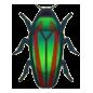 Jewel Beetle Image