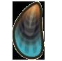 Mussel Image