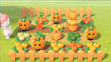 ANCH - Rinchan - Pumpkin Patch Idea 3