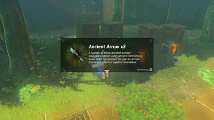 FT 06 Ancient Arrows.jpg