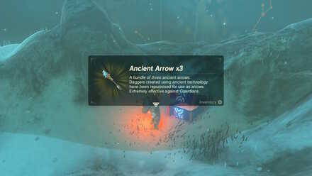 FT 13 Ancient Arrow.jpg