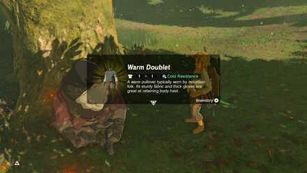 BOTW Master Mode Warm Doublet