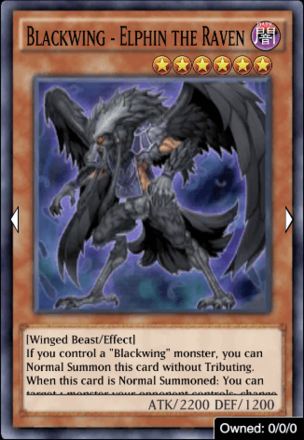 Blackwing - Elphin the Raven