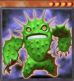 Cactus Fighter