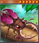 Naturia Stag Beetle