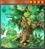 Naturia White Oak