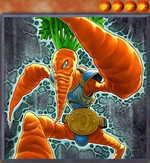 World Carrotweight Champion