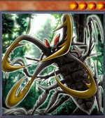 Cross-Sword Beetle